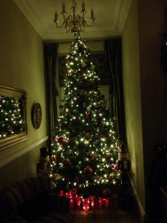 Newcastleton, UK: Christmas Tree