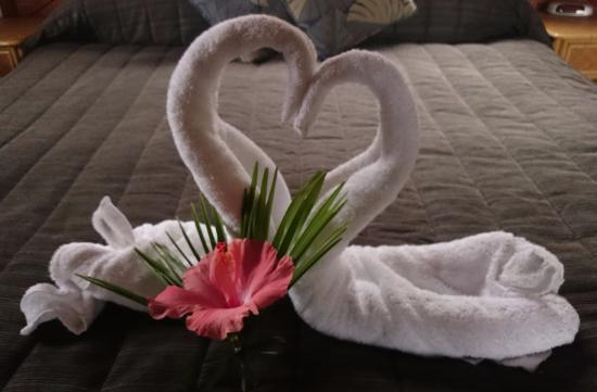 Pacific Harbour Lodge: Bienvenue avec des serviettes, magique!