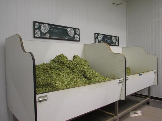 hops room picture of sierra nevada brewery mills river tripadvisor rh tripadvisor com