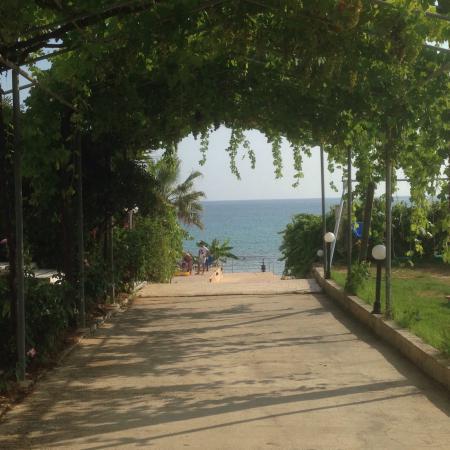 Kypseli, Yunani: photo4.jpg