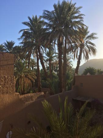 Riad Dar Zaouia: photo1.jpg