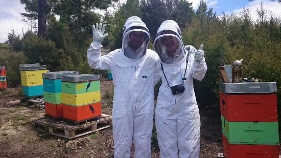 Bee Haven Paihia: Aucun problème avec la combinaison