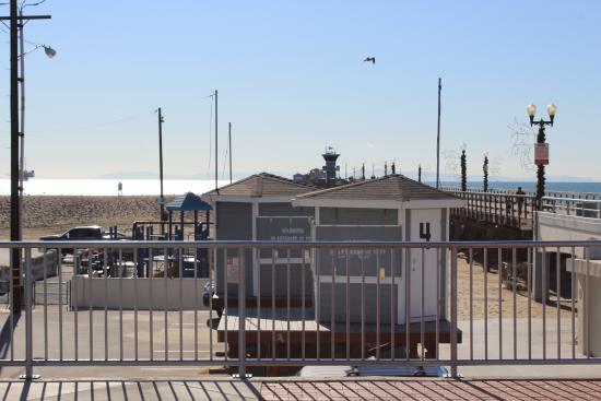 Pier seal beach