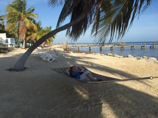 Beach Area Seashell Resort 57612 Overseas Highway Marathon Fl