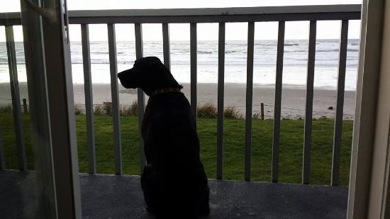 Surfside Resort: Jack enjoying the view from our balcony.