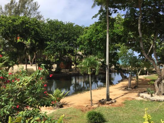 Maritim Resort & Spa Mauritius: vue de la chambre 114