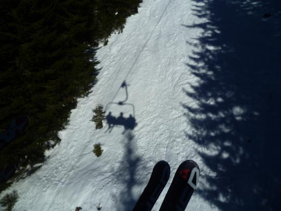 Skischule Bogei Filzmoos