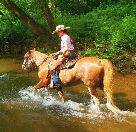Bourbon, MO: Awesome Trail rides
