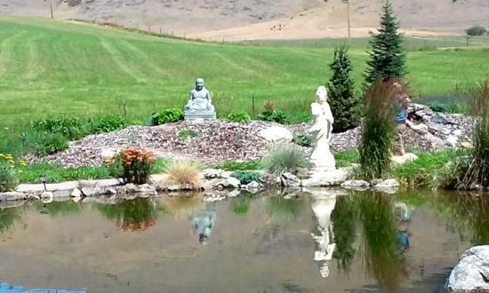 Koi pond picture of garden of one thousand buddhas arlee tripadvisor Garden of one thousand buddhas