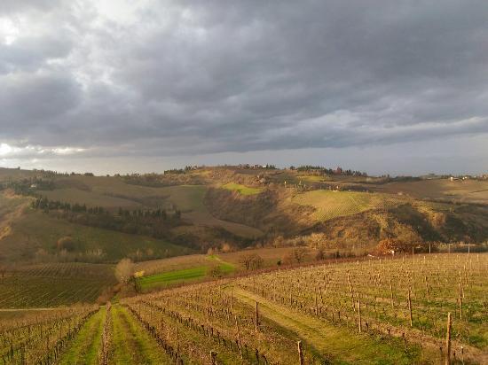 Riolo Terme, Italia: Tenuta Nasano Azienda Agricola Gardi Bertoni