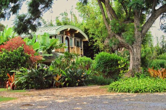 Banyan Bed And Breakfast Retreat Maui