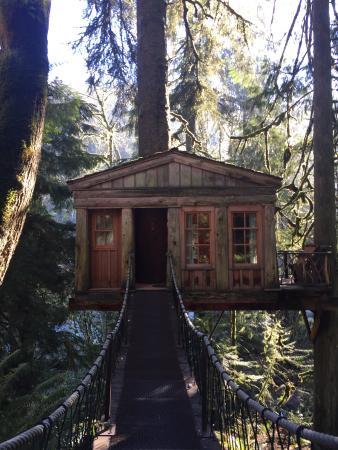 Treehouse Point: photo0.jpg
