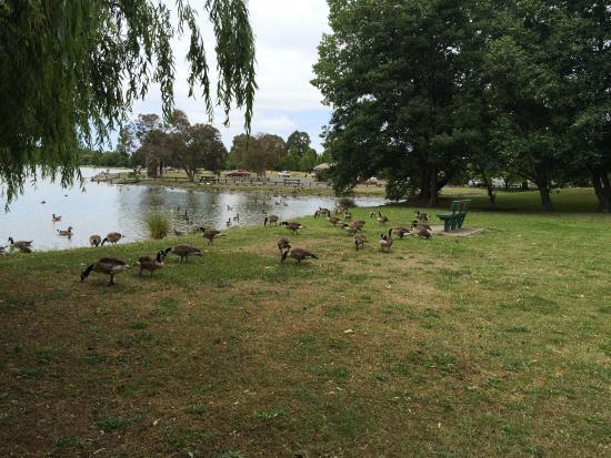 Henley Lake