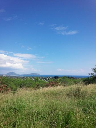 Diamond Head: IMG_20160109_133047_large.jpg