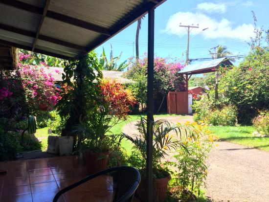 Aloha Nui: another view of the side yard