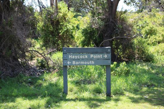 Ben Boyd National Park, Australië: Haycock Point
