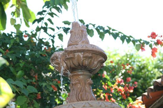 Hotel Vallartasol: fountain by entrance