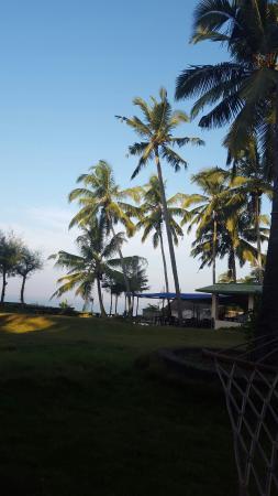 Varkala SeaShore Beach Resort: IMG-20160105-WA0006_large.jpg