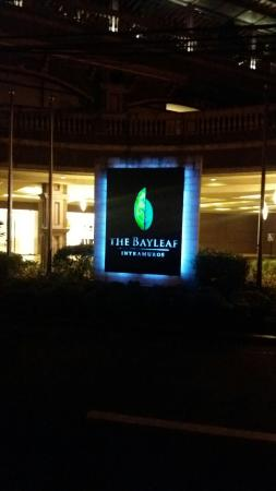 The Bayleaf: 20160105_213513_large.jpg
