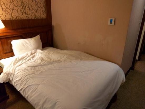 Park Hotel: 床邊的牆壁