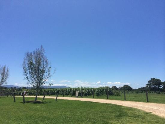Ewingsdale, Australia: The Farm
