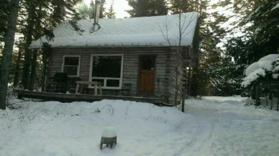 Big Hill Retreat : The Spruce Cabin