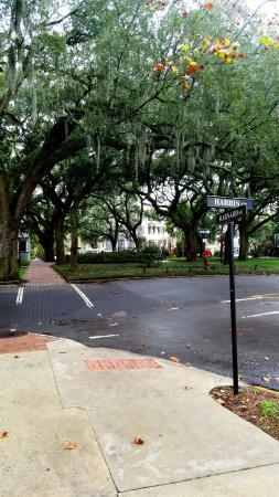 Pulaski Square Savannah 2019 All You Need To Know