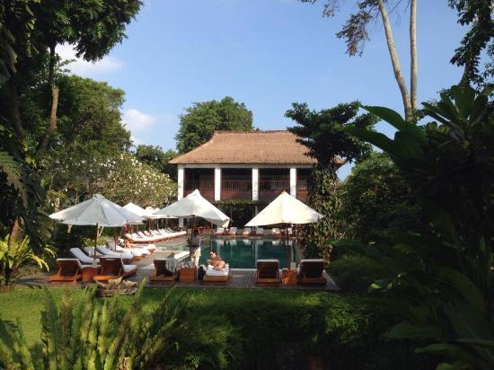 Uma by COMO, Ubud : Pool