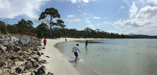 Tasmânia, Austrália: photo2.jpg