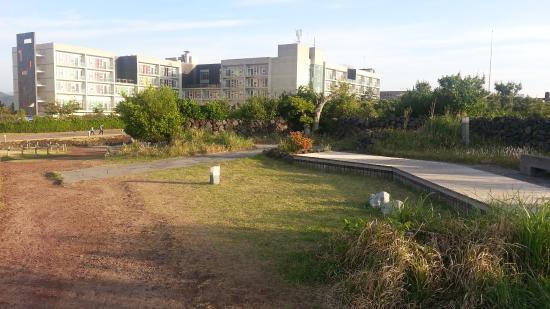 Phoenix Jeju : 콘도 건물
