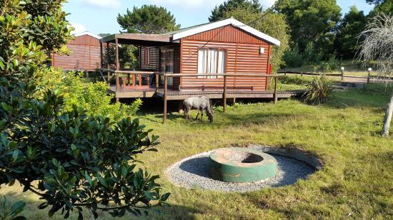 Kwelanga Country Retreat: Chalet
