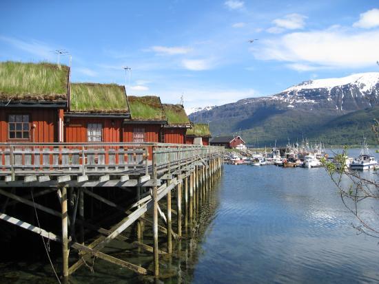 Manndalen Sjoebuer : Вид на домики