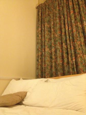 Elder York Guest House: 家具の色が暖かくて落ちつく。