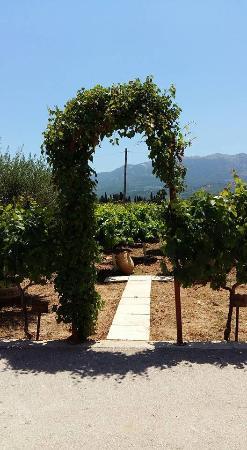 Hatziemmanouil Winery