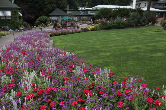 Butchart Gardens: One of the Many Gardens