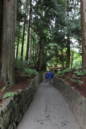 Butchart Gardens: Enchanted Forest
