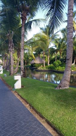 2 picture of paradisus palma real golf spa resort punta cana rh tripadvisor com