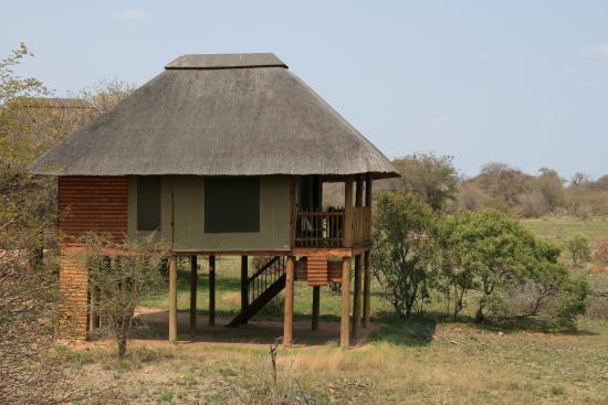 nThambo Tree Camp: Chambre
