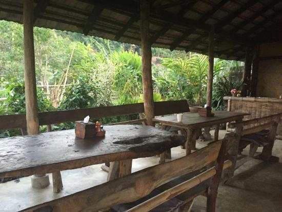 Bamboo Nest de Chiang Rai: photo3.jpg