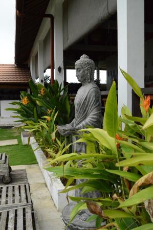 Casa Asia: Il giardino