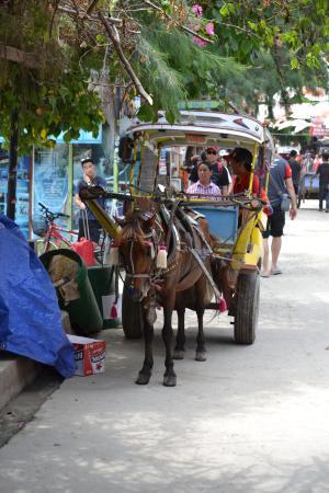 Mezzo di trasporto locale