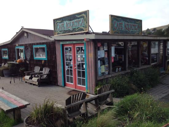 Jenner, CA: Super delicious food, right across the street from the Kiosk.