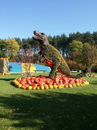 Beelitz, Allemagne : Spargelhof Klaistow