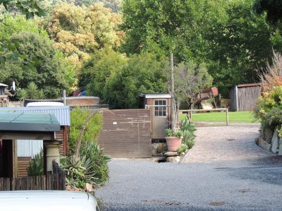 Disa River Farm