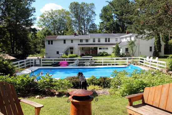 Buttonwood Inn on Mount Surprise: Enjoy our property, swim, hike, relax.