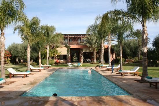 villa jardin nomade maison vue de la piscine - Jardin Marrakech