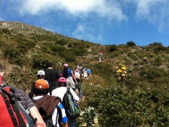 Santa Ana Volcano: In the crowd 1