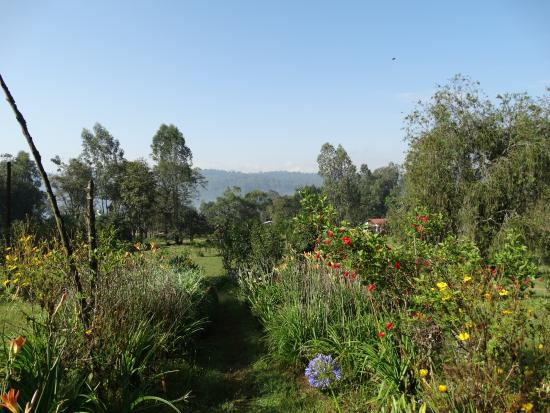 Bonga, Ethiopia: The gardens