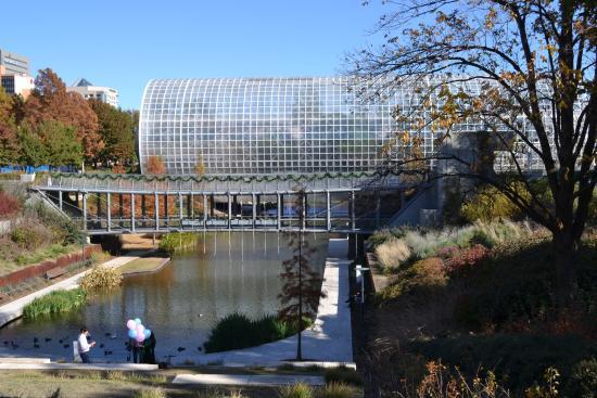 Myriad Botanical Gardens: Myriad Botanical Garden