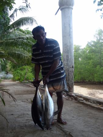 Lorenso Cottages Beach Garden: Some Tuna for dinner, caught by our guide . .